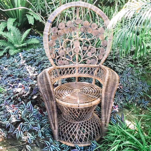 Boho Peacock Chairs For Hire